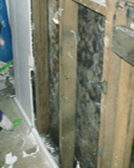 Mould Removal Remediation Cleaning Adelaide